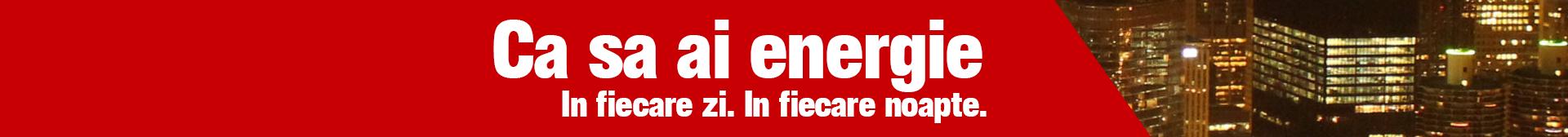 Inelco Mon Proiectare retele lectrice si instalatii electrice in Pitesti
